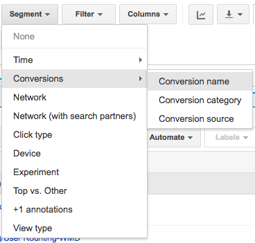 Google Ads Conversion Segment